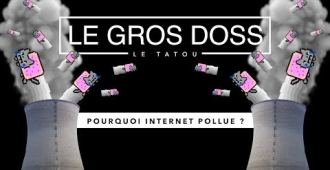 Pourquoi pollue-t-on sur Internet ?